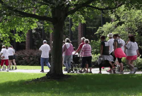 Click to play video: Hospice Walk